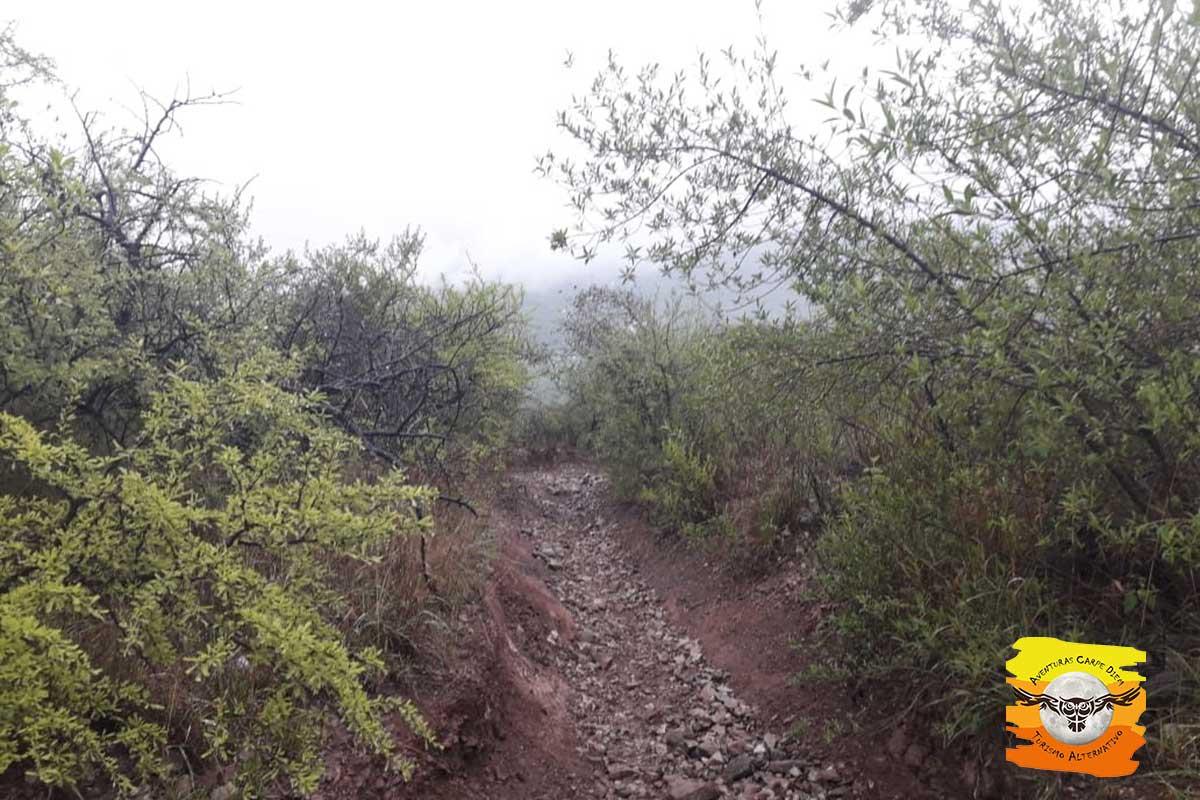 Travesía al Cerro Mojón y Pan de Azúcar